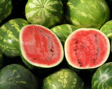 Meloun - ovoce - polovina, rozpůlený, rozdělený