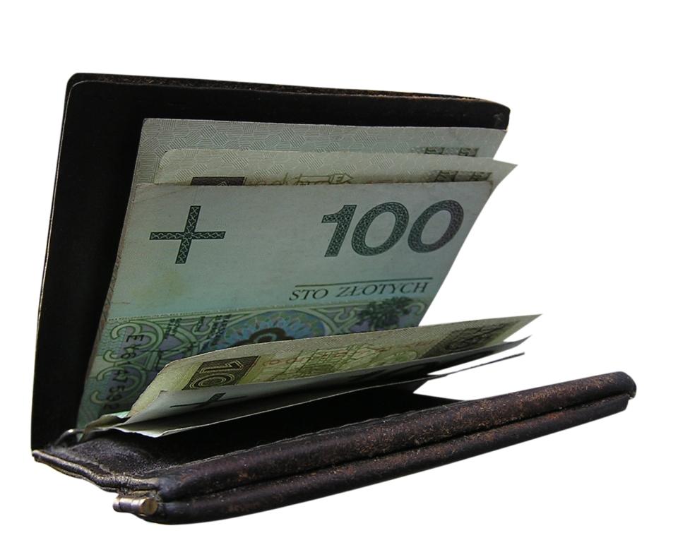 Peněženka s penězi
