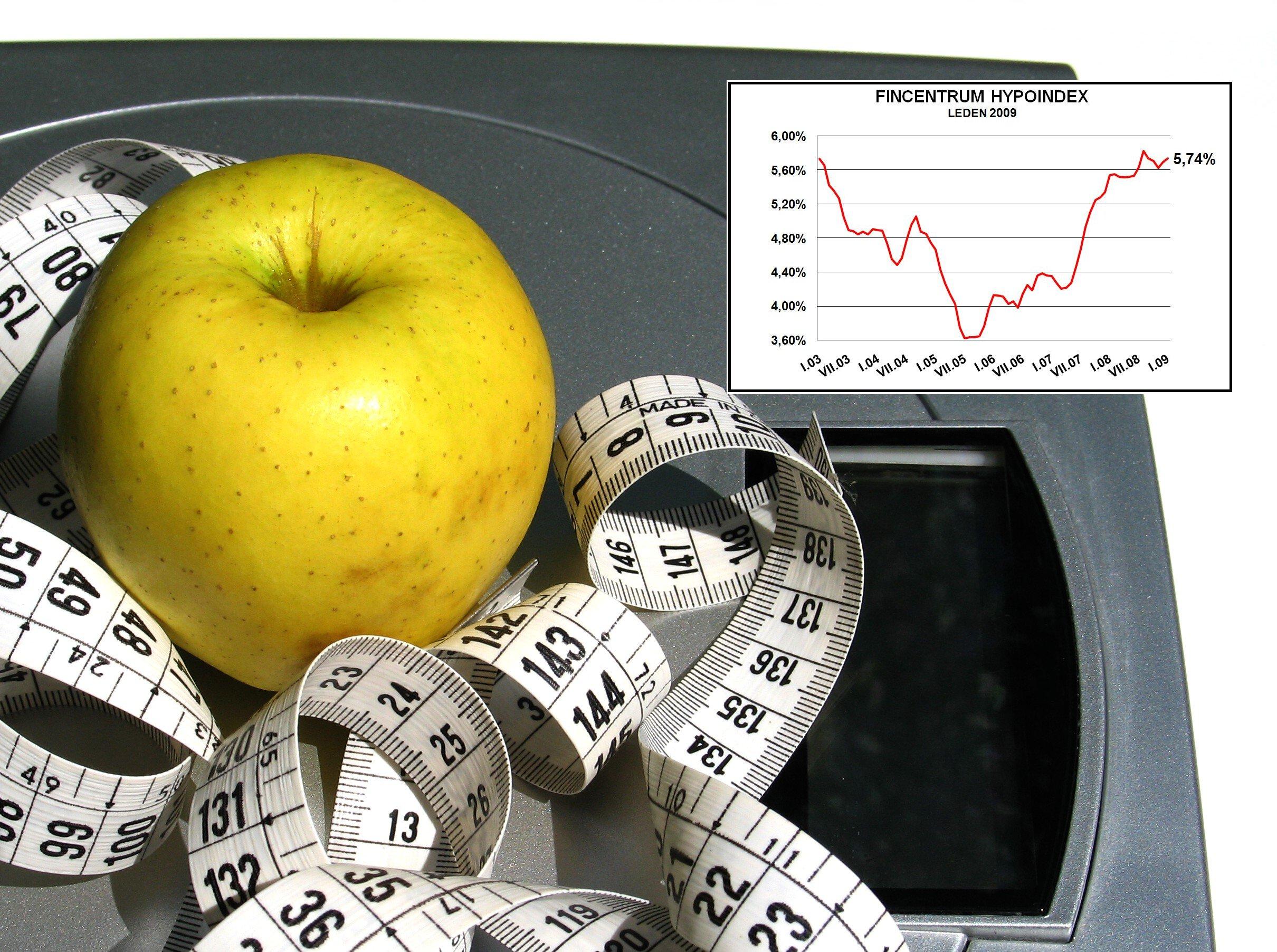 """Hypoindex leden 2009: Hypoteční banky zažily velmi """"dietní"""" měsíc"""