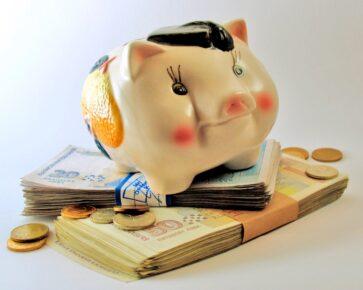 Prasátko - peníze - spoření - státní příspěvek
