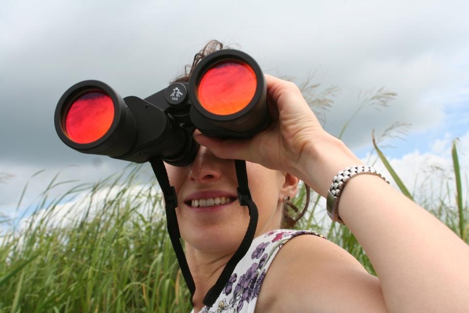 Dívka s dalekohledem - výhled do roku 2018