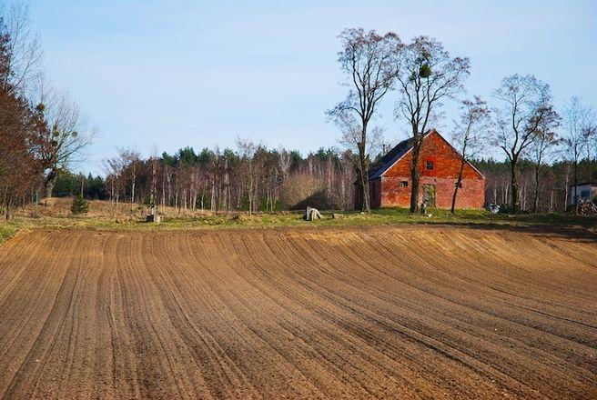 Pozemek - pole - ornice - dům - les