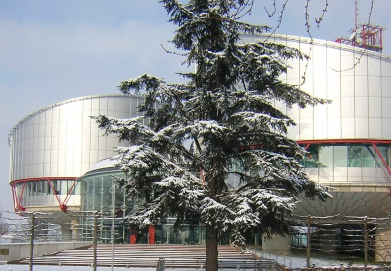Evropský soud pro lidská práva (ESLP)