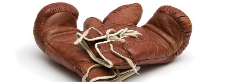 boxing gloves boxovací rukavice