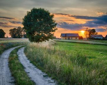 Přístup k pozemku: Nebytné cesty