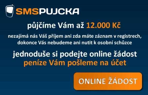 online půjčky dnes doma
